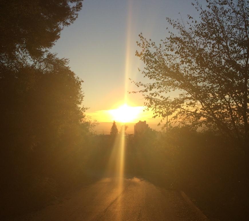 Colegio Cartuja sunset